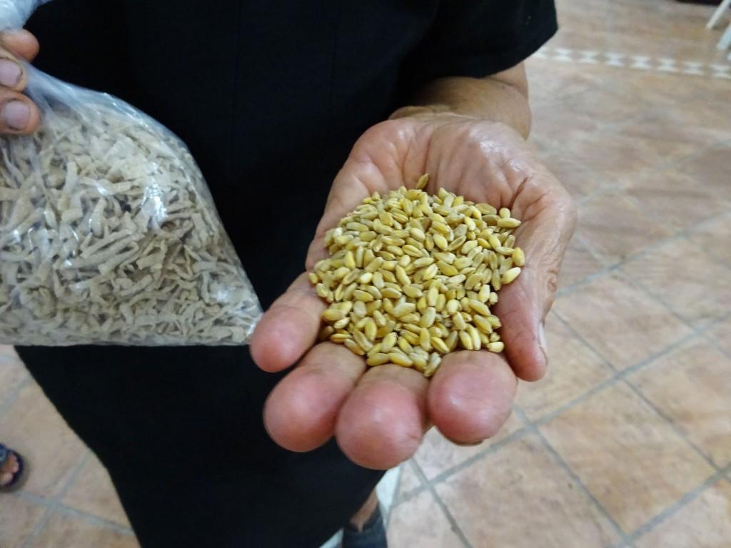 Το λόπι της Ρόδου, μια άγνωστη ποικιλία ξερού φασολιού με ιδιαίτερη αξία